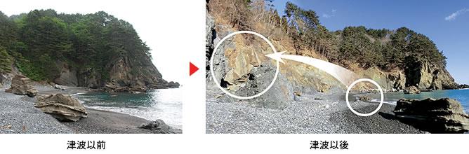 白亜紀宮古層群(化石・海底地層) | 田野畑村